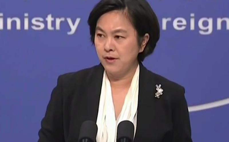 中国外交部新闻司司长兼发言人华春莹。