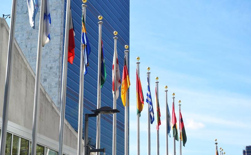 联合国总部。
