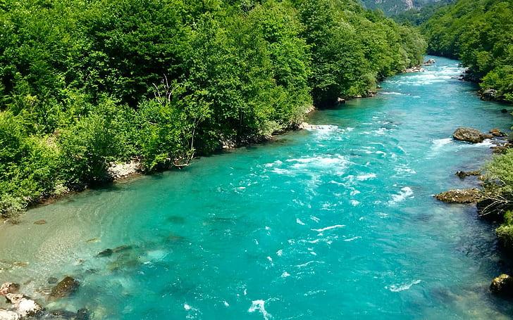 黑山,扎布利亚克,Tara河,杜米托尔国家公园