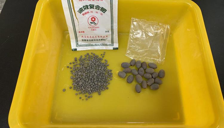 中国寄到台湾的不明种子(图片来源:中央社)