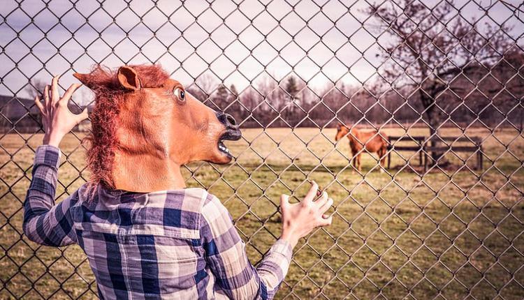 马头 人与马