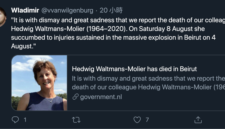 赫德维格(Hedwig Waltmans-Molier)(图片来源:推特/)