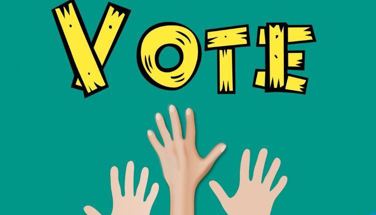 选举 投票