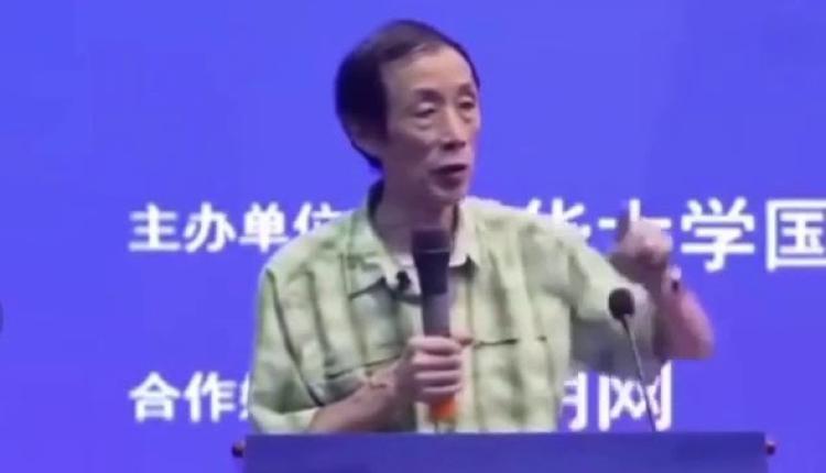 复旦大学中国研究院研究员陈平