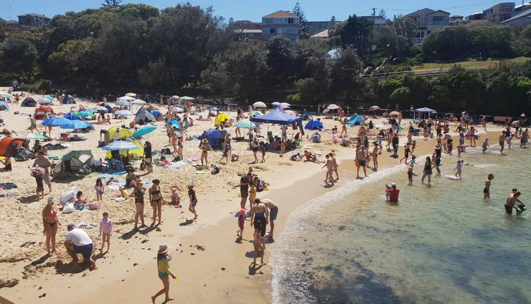 悉尼海滩上的游客