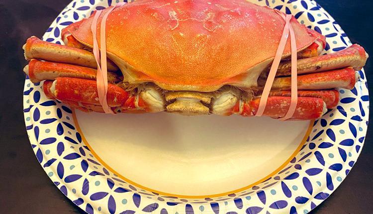 螃蟹 图片来源:推特