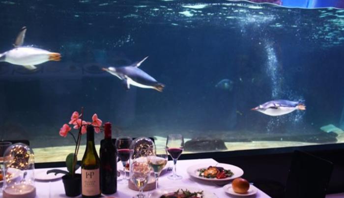 海底世界主题餐厅