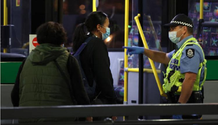 悉尼公交车