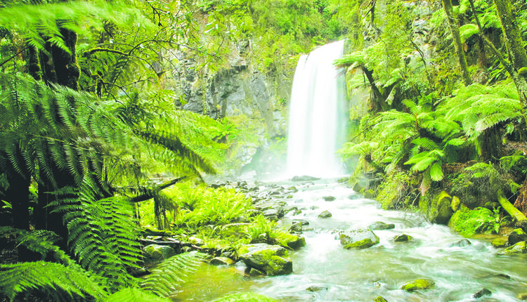 霍普顿瀑布Hopetoun Falls