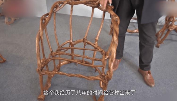 山东小伙用8年种出天然椅子
