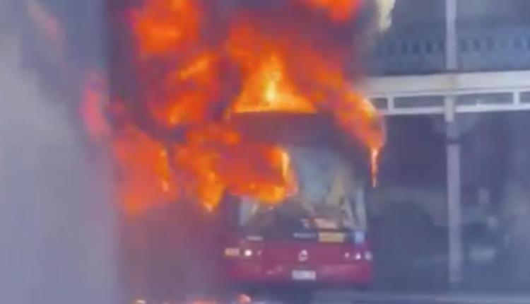 悉尼街頭公車突然起火 現場濃煙滾滾