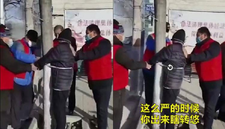 视频:野蛮防疫 石家庄老人被绑树上