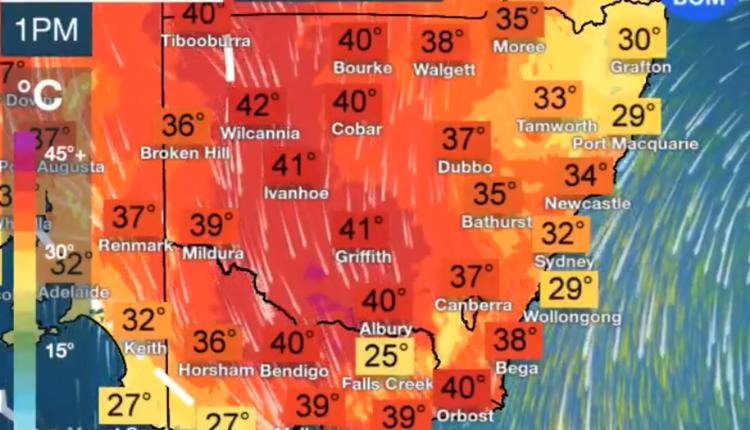 澳洲东南部迎40度高温天气