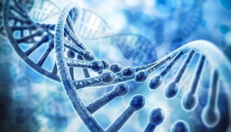 中国公司被曝企图利用病毒测试收集美国人的DNA
