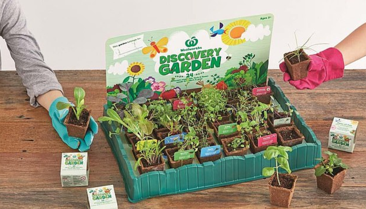 Discovery Garden系列的收藏品回歸