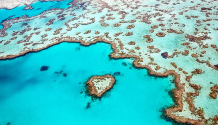 心形礁(Heart Reef)