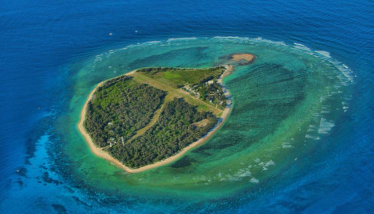 伊利特女士岛(Lady Elliot Island)