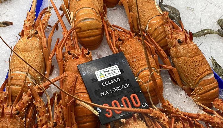 龙虾,海鲜,食物,购物