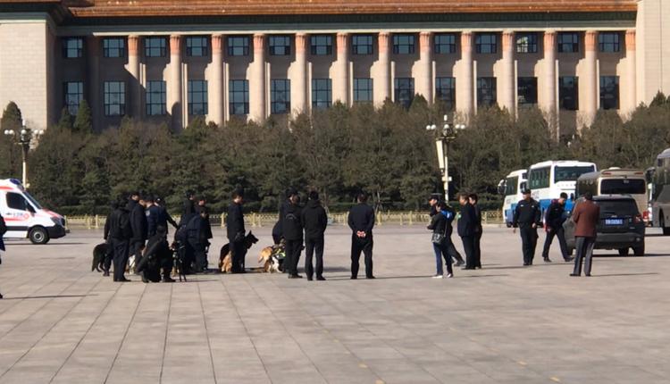 2019年3月15日,北京两会安保人员携警犬在人民大会堂前集合