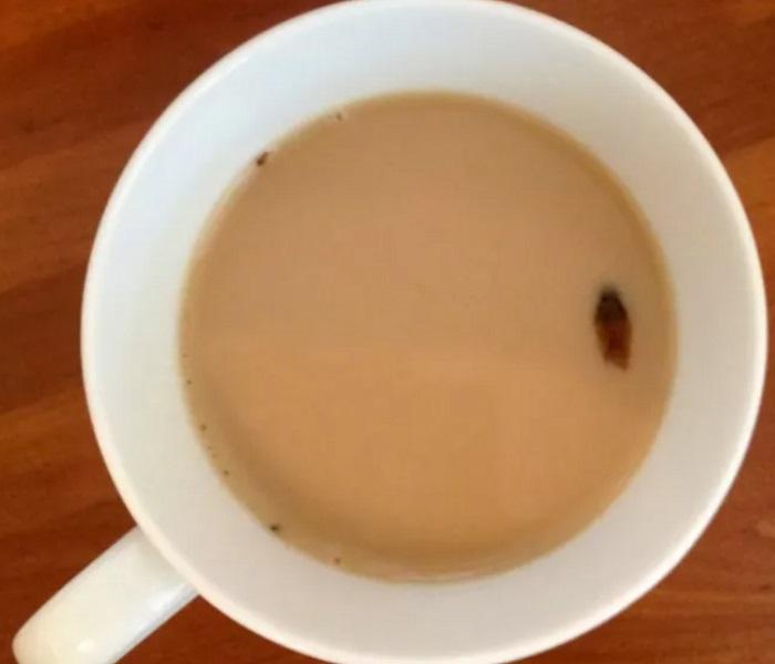 咖啡中含有蟑螂