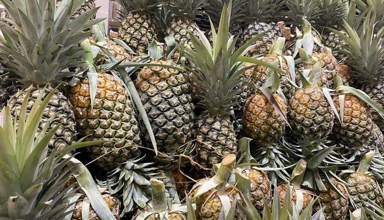 水果 菠萝 凤梨