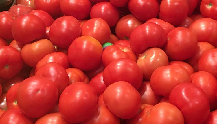 水果 番茄 西红柿