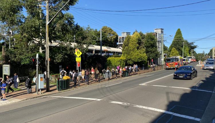 突发:悉尼老人跳火车  T1线停摆