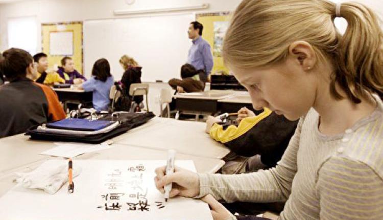 语言学校,独立教育机构,成人教育,中文学校