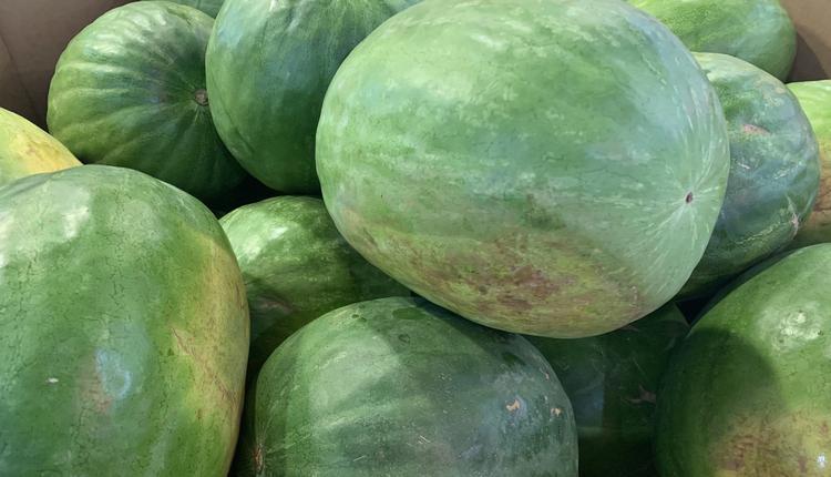 西瓜 水果