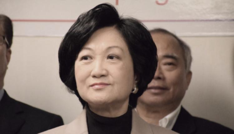 香港新民党主席兼立法会议员叶刘淑仪