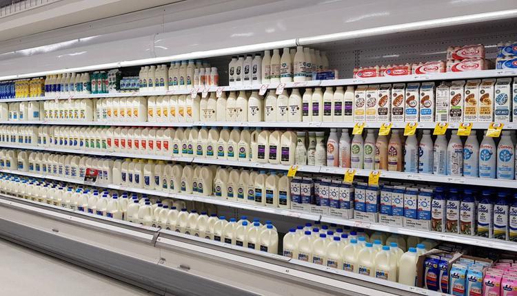 购物 冷藏 牛奶 奶制品 食物 超市