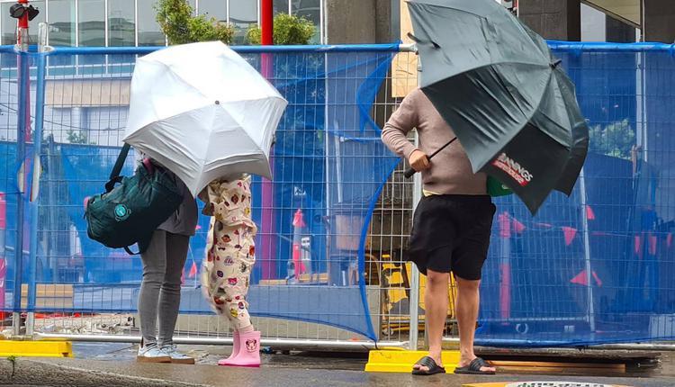 下雨 雨傘 大雨 天氣 路人 Hurstville