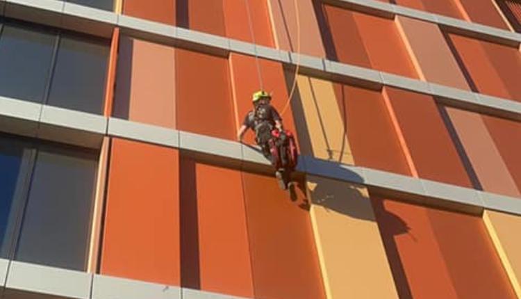 悉尼消防员勇救被困18楼猫咪