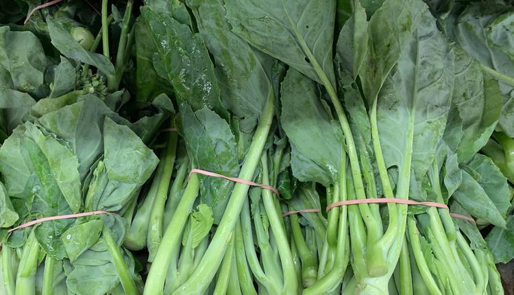 蔬菜 青菜 芥兰