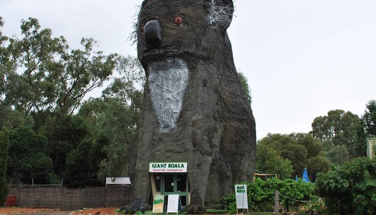 大考拉(The Giant Koala)图片来源:timeout