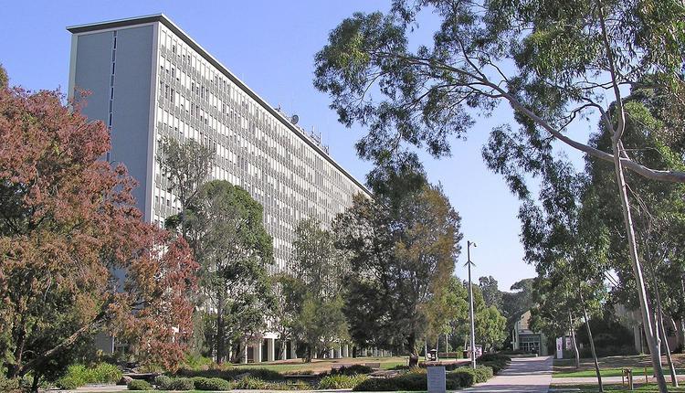 莫纳什大学,