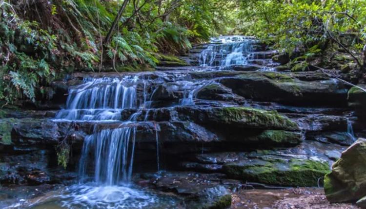 蓝山国家公园里的Leura Cascades