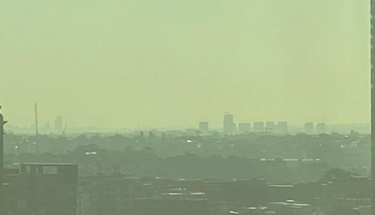 减灾性燃烧致空气污染 新州多地遭烟雾笼罩