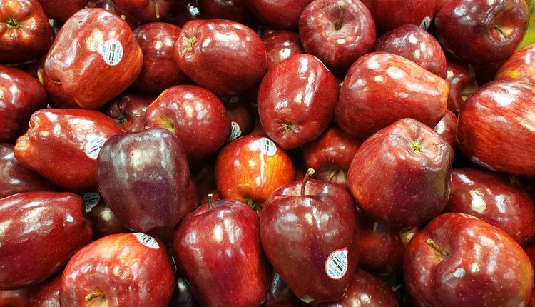 蛇果 红元帅,美国苹果 水果