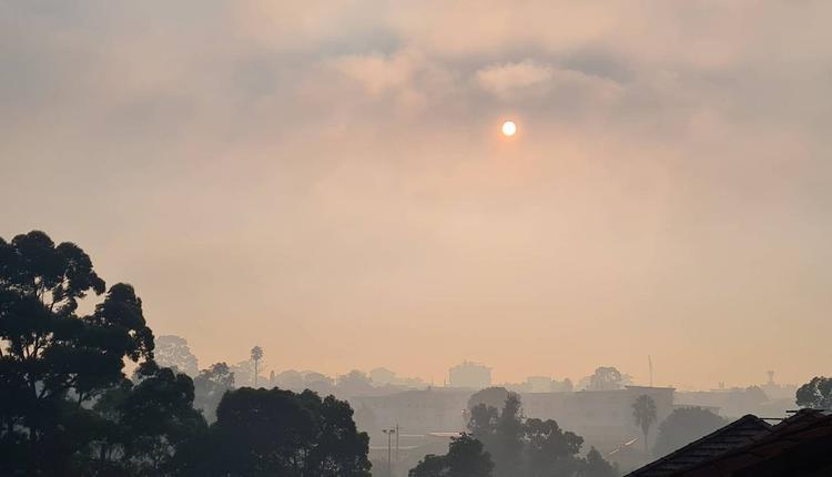 烟雾 大雾
