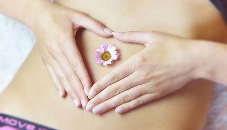 肠道健康示意图 图片来源:Piqsels