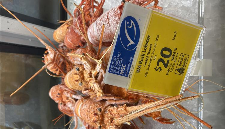 龙虾 食物