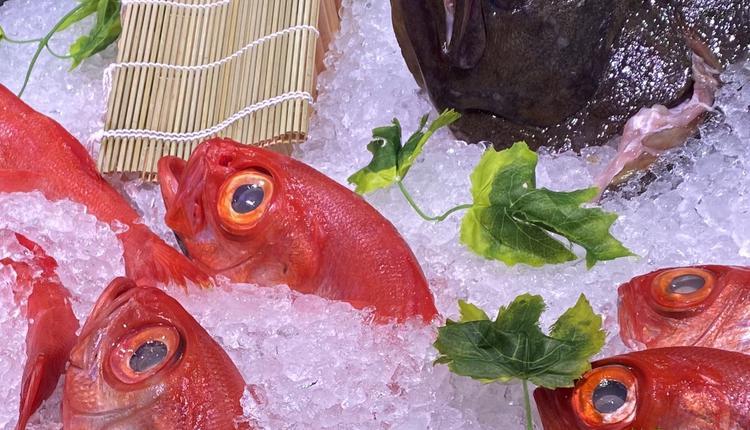 鱼,海鲜,食物,购物
