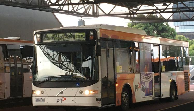 公共汽车 box hill 公交车 巴士