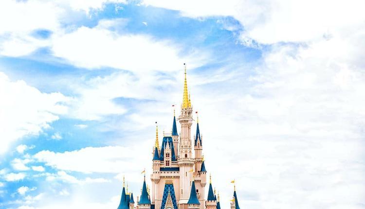 迪士尼樂園示意圖 圖片來源:Piqsels