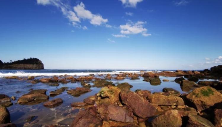 Bouddi国家公园的Maitland Bay Beach