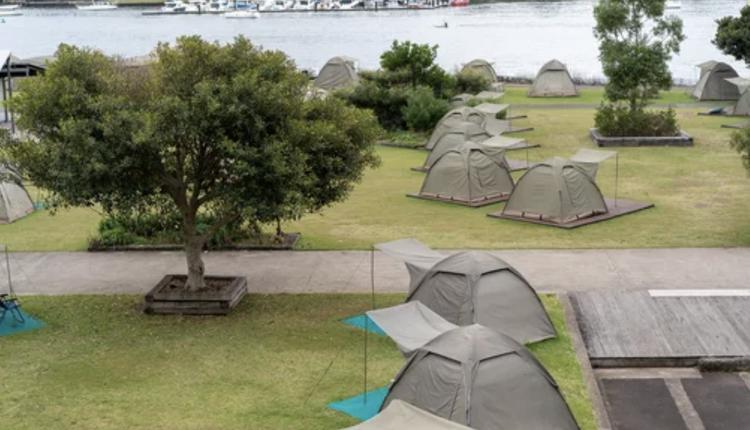 鹦鹉岛,露营
