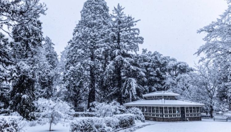 澳洲天气,降雪,冬天