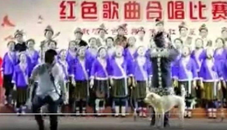 百年党庆红歌赛 小狗上场搅局?被网友群嘲