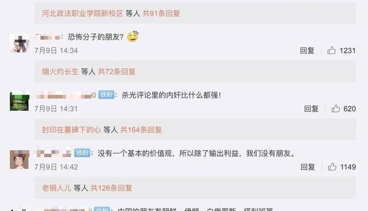 网友在胡锡进微博下的截图